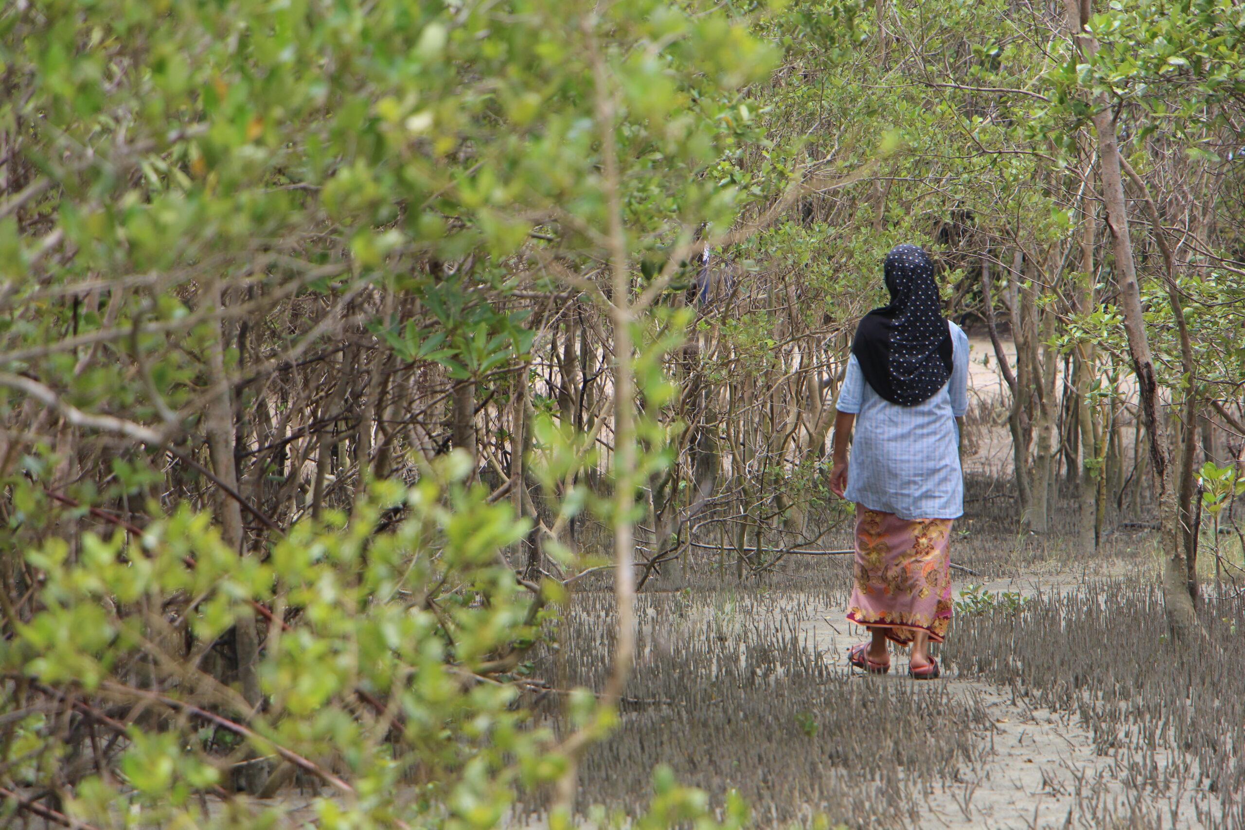 """ชุมชนจัดการตนเอง : ประสบการณ์บ้าน """"บ้านบุโบย"""" จังหวัดสตูล"""